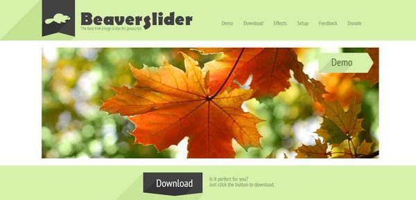 Beaver Slider