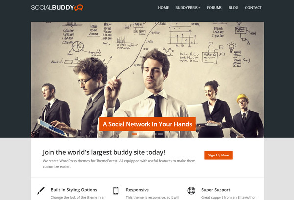 Premium WordPress BuddyPress Themes – eWebDesign