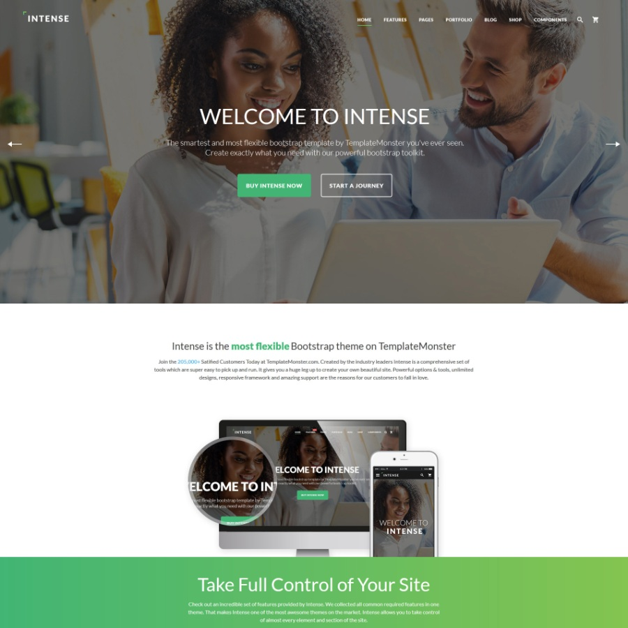 Save 50 on any template by templatemonster bonus 25 promo code intense bootstrap template maxwellsz